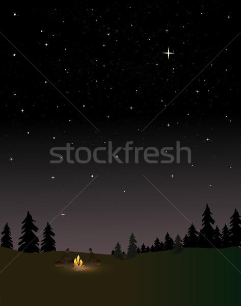 Ognisko ludzi około noc gwiazdki niebo Zdjęcia stock © marcopolo9442