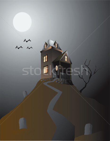 Haunted House Stock photo © marcopolo9442
