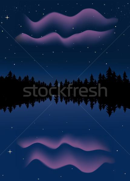 Northern Lights Stock photo © marcopolo9442