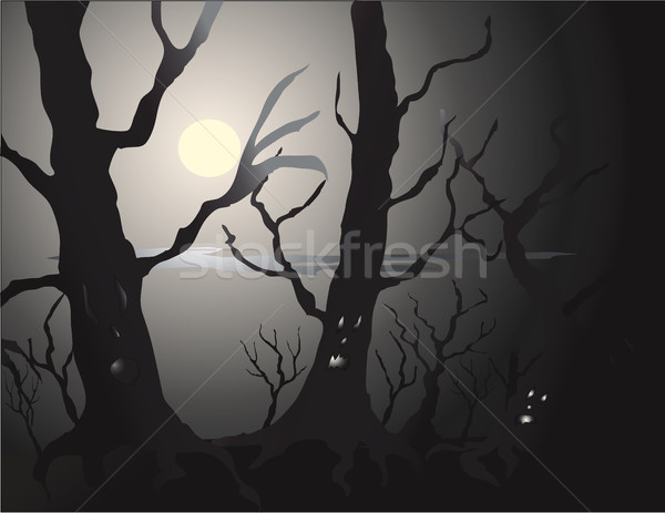 Bos levend tijd halloween bomen Stockfoto © marcopolo9442