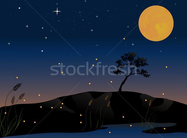 Telihold nyár este fa tűz tájkép Stock fotó © marcopolo9442