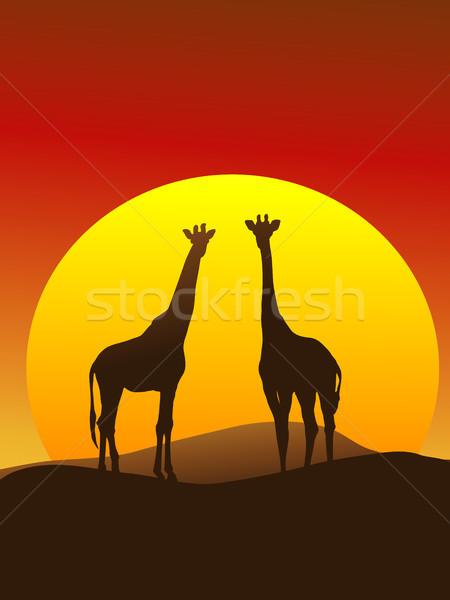 жираф силуэта вертикальный Жирафы Серенгети оранжевый Сток-фото © marcopolo9442