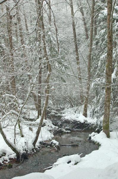 Arroyo invierno forestales nieve montanas corriente Foto stock © marcopolo9442