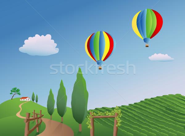 Balloons over a Vineyard Stock photo © marcopolo9442