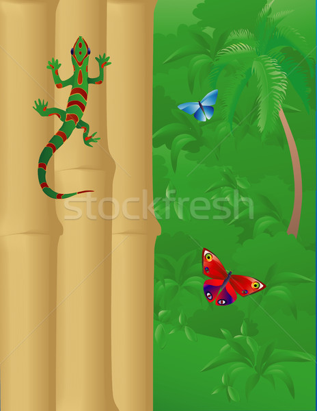 Gekko bamboe jungle muur buiten Stockfoto © marcopolo9442