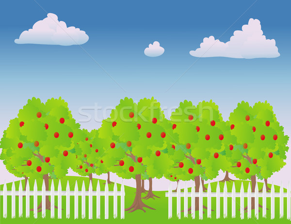 Apple Orchard Stock photo © marcopolo9442
