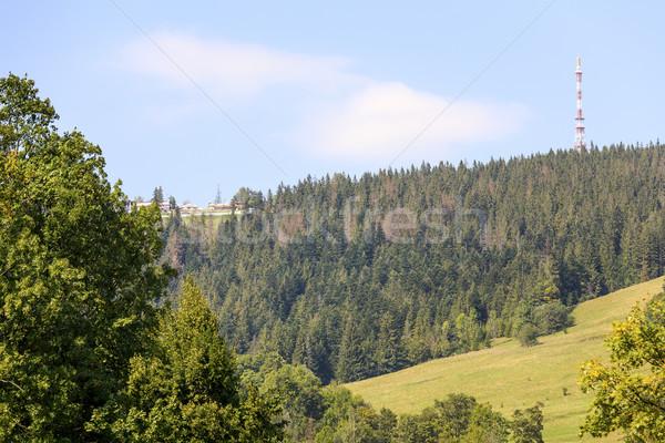 Erdő emelkedő hegy zöld csúcs magasság Stock fotó © marekusz