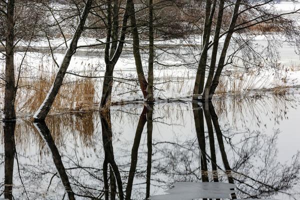 Arbres rivière inondations eau hiver paysages Photo stock © marekusz