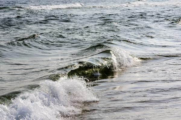 Baltic Sea waters  in the morning sun Stock photo © marekusz