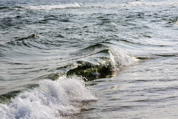 Mar báltico manhã sol coberto pequeno ondas Foto stock © marekusz