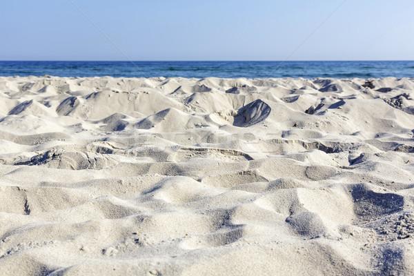砂浜 海岸 バルト海 空 風景 海 ストックフォト © marekusz