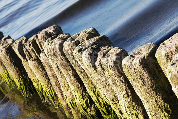 Old breakwaters in the sea in Kolobrzeg Stock photo © marekusz