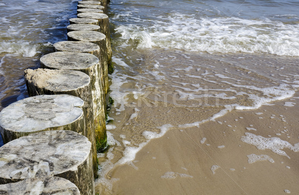 Wooden breakwaters Stock photo © marekusz
