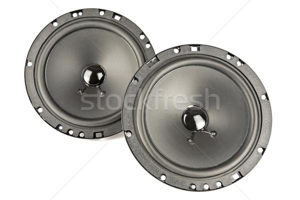 Stock fotó: Kettő · hangfalak · illesztett · autó · technológia · hullám