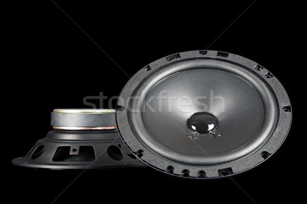 Twee auto sprekers kant aangepast Stockfoto © marekusz