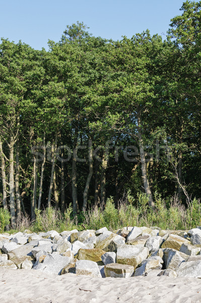 Boulders placed between the sandy beach and dune Stock photo © marekusz