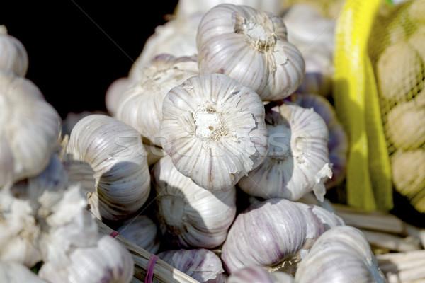 Bundle of garlic bulbs Stock photo © marekusz