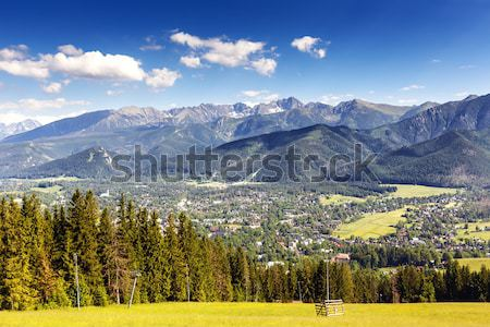 City of Zakopane and Tatras seen from the distance Stock photo © marekusz
