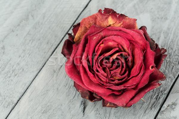 Kurutulmuş çiçek kırmızı gül lekeli ahşap Stok fotoğraf © marekusz