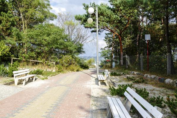 Praia acessar caminho mar báltico paisagem europa Foto stock © marekusz