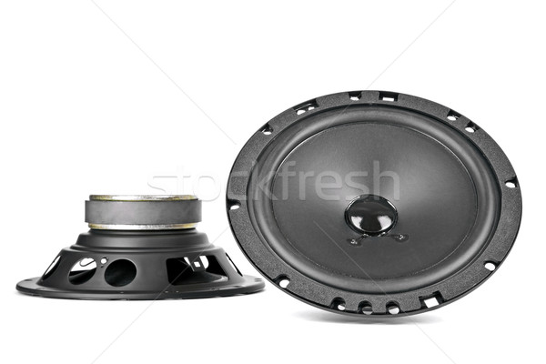 Twee auto sprekers aangepast technologie golf Stockfoto © marekusz