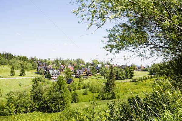Green areas and houses in the town of Zakopane Stock photo © marekusz