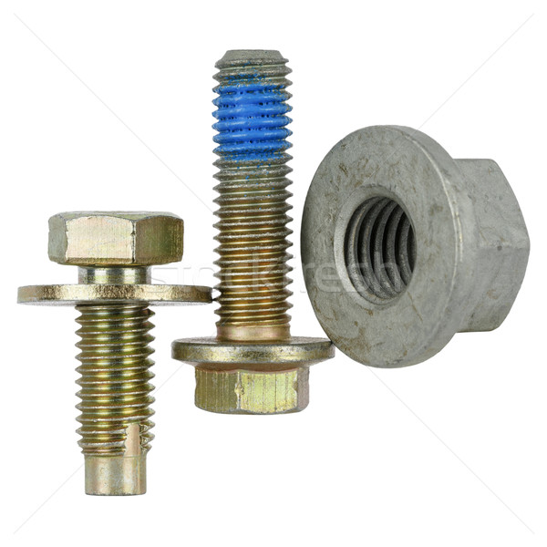 Two special bolts and one nut  Stock photo © marekusz