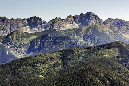 Beautiful view of the Tatra mountains Stock photo © marekusz