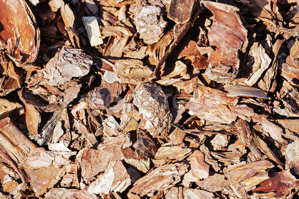 Wooden shavings for garden Stock photo © marekusz
