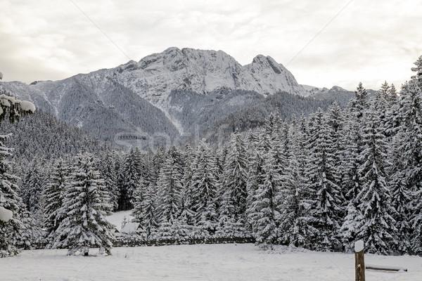 Mountain Giewont next to city of Zakopane Stock photo © marekusz