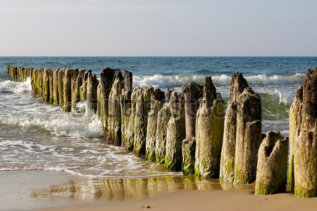 Wooden breakwaters in Kolobrzeg, Poland Stock photo © marekusz