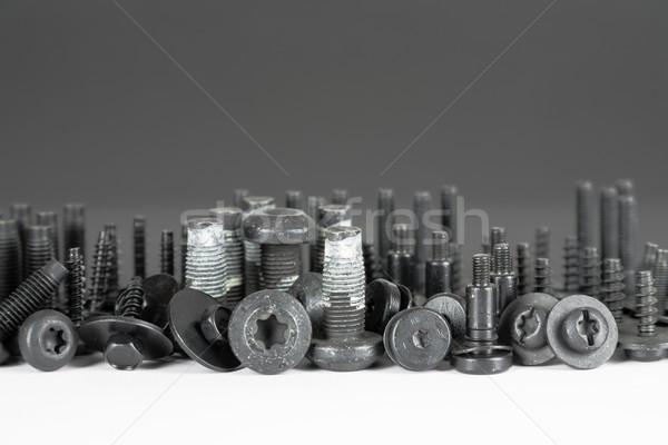 various special screws Stock photo © marekusz