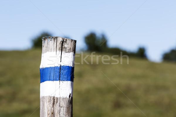 Marked hiking trail  Stock photo © marekusz