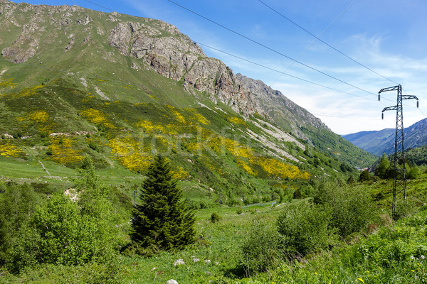 Pyrenees in France Stock photo © marekusz