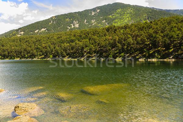 Meer regio Andorra boom natuur aarde Stockfoto © marekusz