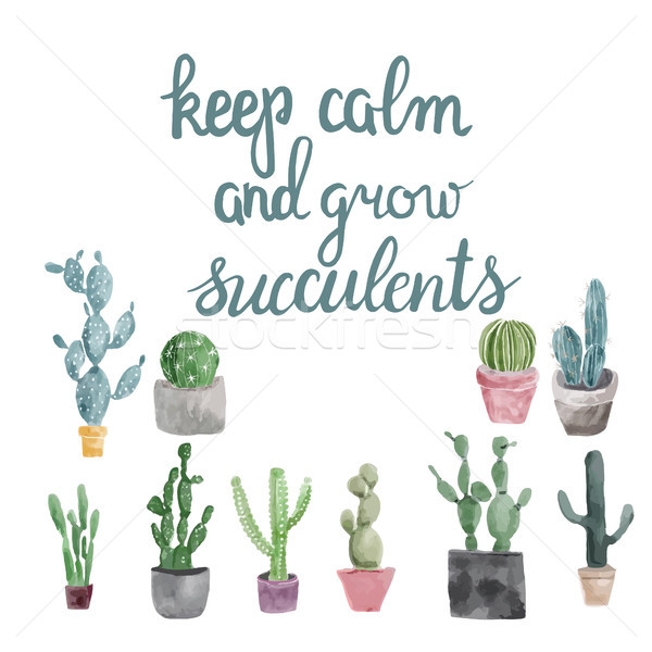 succulents and calligraphy quote keep calm and grow succulents . Stock photo © Margolana