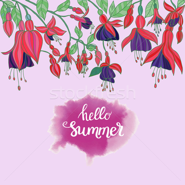 Flowers fuchsia on pink background and hello summer lettering Stock photo © Margolana