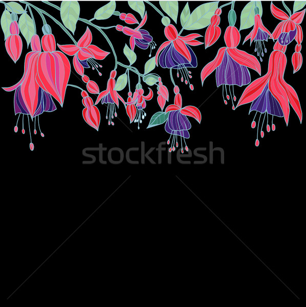 Kézzel rajzolt szépség virágmintás textúra virágok vonzó Stock fotó © Margolana