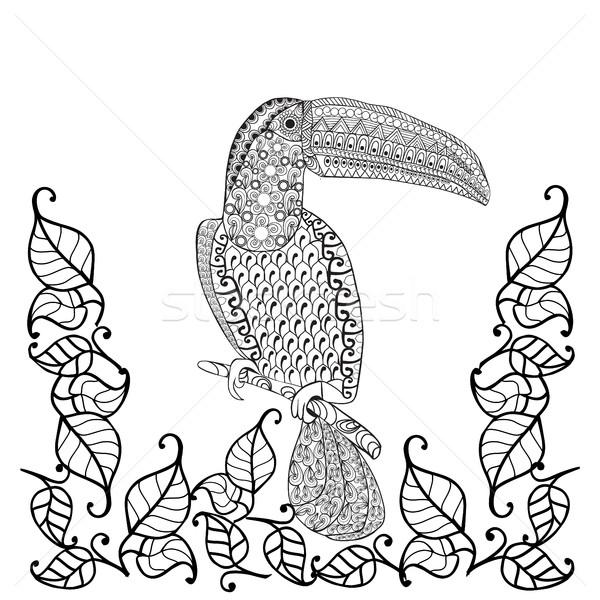 Vektör Kuş Boyama Kitabı Yetişkin Yetişkin Stil Vektör
