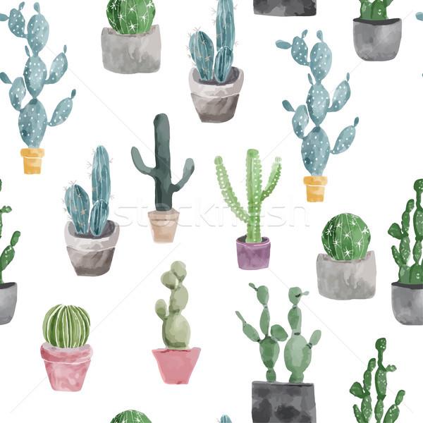 Pattern of cactus and succulents isolated on white background. Stock photo © Margolana
