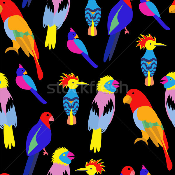 Sin costura exótico tropicales aves paraíso vector Foto stock © Margolana