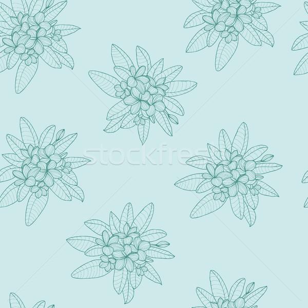 パターン フローラル ハワイ 花 葉 美しい ストックフォト © Margolana