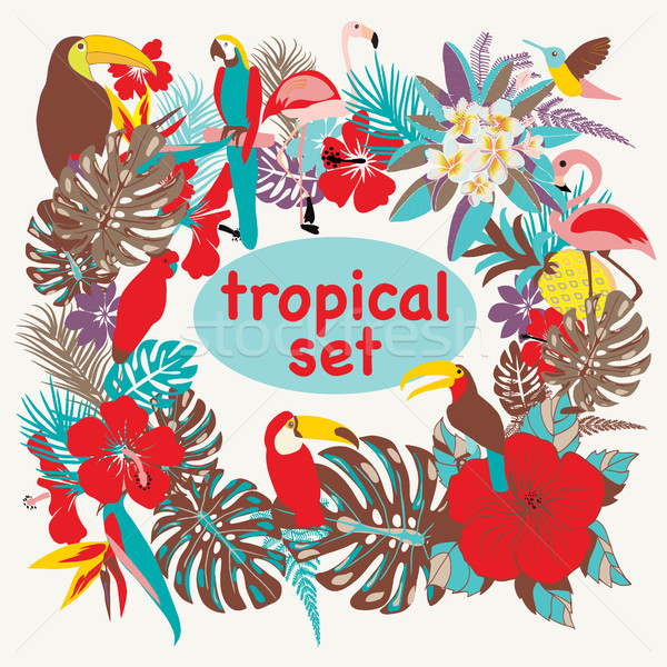 Background with of tropical birds, palm leaves and flowers Stock photo © Margolana