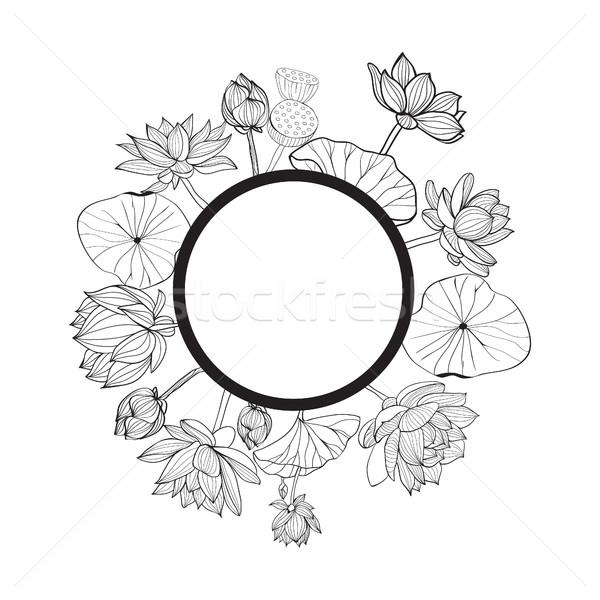 Vecteur dessinés à la main floral cadre blanc noir doodle Photo stock © Margolana