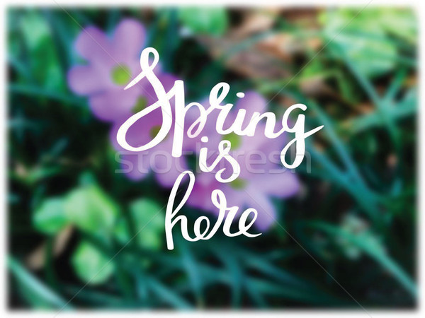 Bright spring background and hello spring text. Stock photo © Margolana
