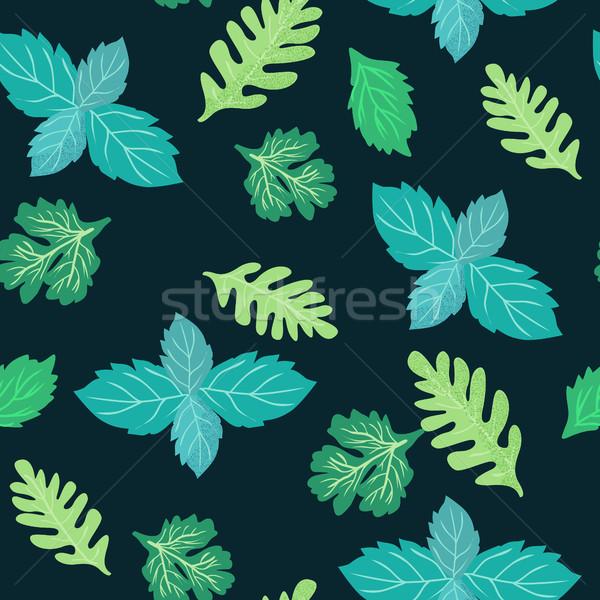 зеленый кулинарный травы кориандр мята мята Сток-фото © Margolana