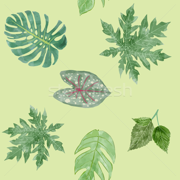 Botanical background of Green leaves tropical plants. Stock photo © Margolana