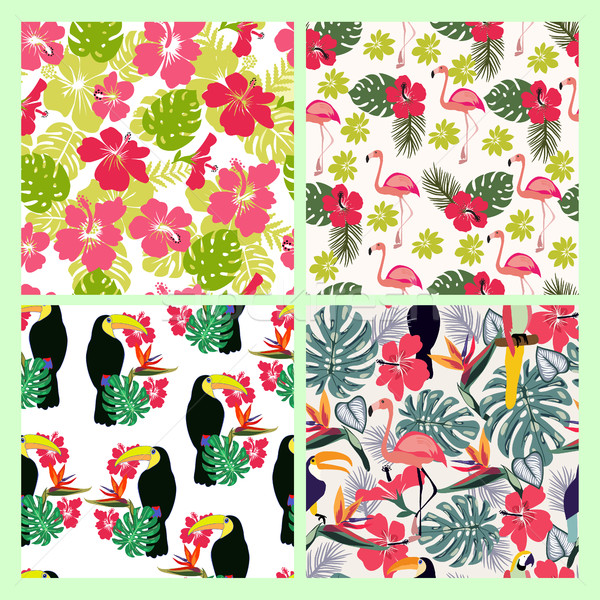 Set of backgrounds with monstera leaves, tropical flowers and bi Stock photo © Margolana