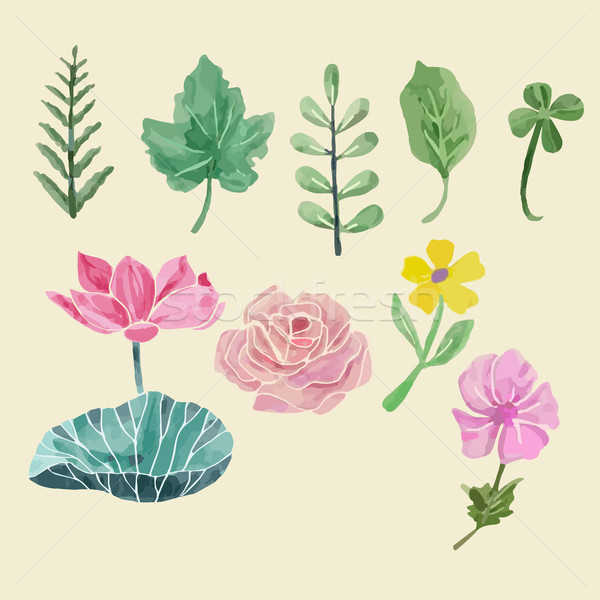 Colorful floral collection with leaves and flowers, drawing wate Stock photo © Margolana