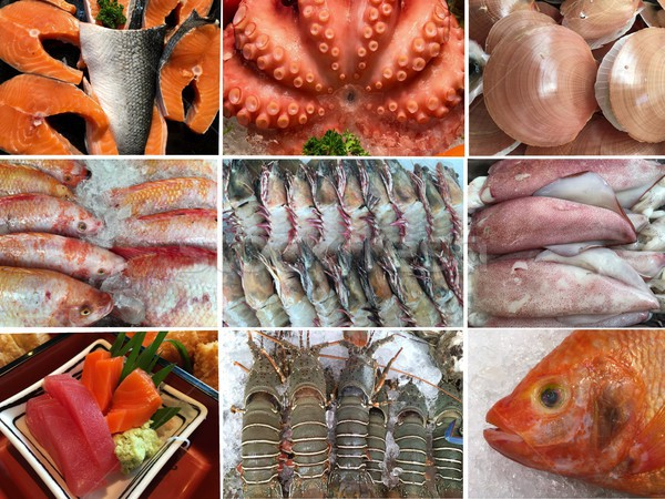 Collection of uncooked seafood (octopus, shrimp, shellfish, muss Stock photo © Margolana